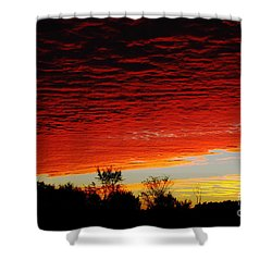 Wild Sky Shower Curtain by Elaine Hunter