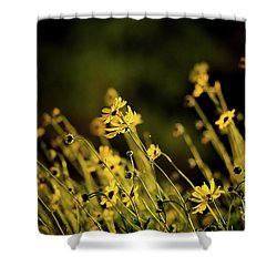 Wild Spring Flowers Shower Curtain by Kelly Wade