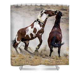 Wild Stallion Battle - Picasso And Dragon Shower Curtain by Nadja Rider