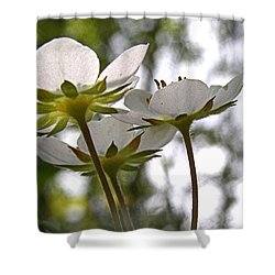 Wild Strawberry Blossoms Shower Curtain