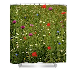 Wild Summer Meadow Shower Curtain