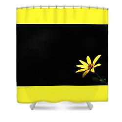 Wild Sunflower Stony Brook New York Shower Curtain by Bob Savage