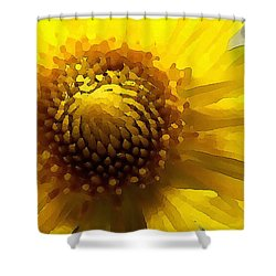 Shower Curtain featuring the digital art Wild Sunflower Up Close by Shelli Fitzpatrick