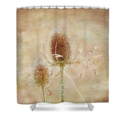 Wild Teasel Shower Curtain