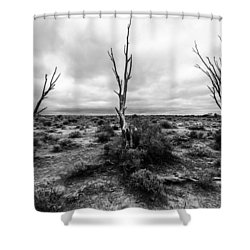 Shower Curtain featuring the photograph Wild Trinity by Julian Cook