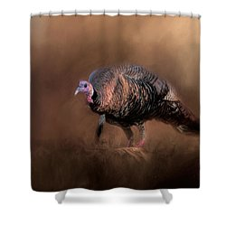 Wild Turkey In The Woods Shower Curtain by Jai Johnson