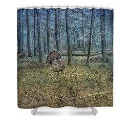 Shower Curtain featuring the digital art Wild Turkeys In Forest Version Two by Randy Steele