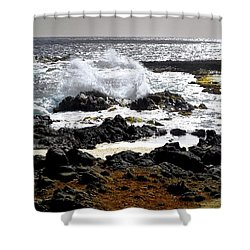 Wild Waters And Lava Rocks Shower Curtain
