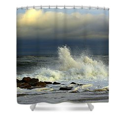 Wild Waves Shower Curtain