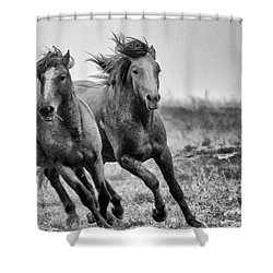 Shower Curtain featuring the photograph Wild West Wild Horses by Kelly Marquardt