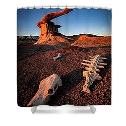 Wild Wild West Shower Curtain