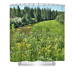 Wild Yellow Flowers  Shower Curtain by Jim Sauchyn
