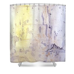 Wilderness Calligraphy - Aspen Tree Shower Curtain