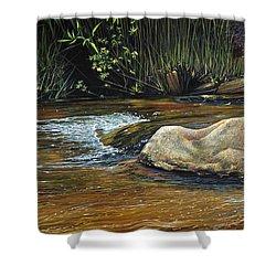 Wilderness Creek Shower Curtain
