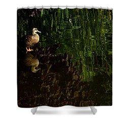 Wilderness Duck Shower Curtain