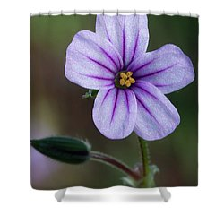 Wilderness Flower 3 Shower Curtain