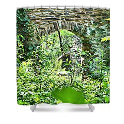 Wilderness Portal Shower Curtain