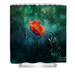 Wildest Dreams Shower Curtain by Agnieszka Mlicka