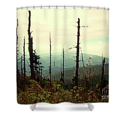 Shower Curtain featuring the mixed media Wildfire by Desiree Paquette