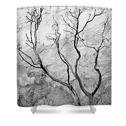 Wildfire Manzanita Shower Curtain