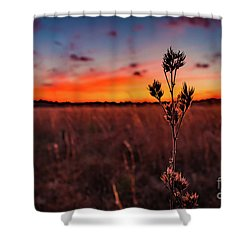 Wildfire Shower Curtain by Rivers Rudloff