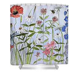 Shower Curtain featuring the painting Wildflower And Blue Sky by Laurie Rohner