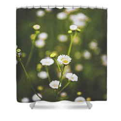 Shower Curtain featuring the photograph Wildflower Beauty by Shelby Young