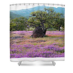 Wildflower Bouquet For Mothers Day Shower Curtain by Brooks Garten Hauschild