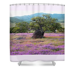 Shower Curtain featuring the photograph Wildflower Bouquet For Mothers Day by Brooks Garten Hauschild