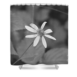 Wildflower Shower Curtain by Eric Liller