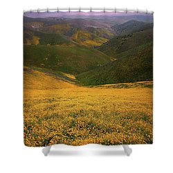 Wildflower Field Up In The Temblor Range At Carrizo Plain National Monument Shower Curtain