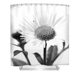 Wildflower In A Wine Glass Black And White Shower Curtain