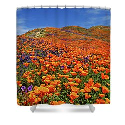 Wildflower Jackpot Shower Curtain