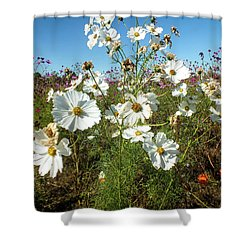 Wildflower Mania Shower Curtain