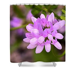 Wildflower Or Weed Shower Curtain