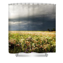 Wildflower Panorama 2008 Shower Curtain