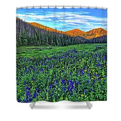 Shower Curtain featuring the photograph Wildflower Park by Scott Mahon