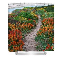 Wildflower Path At Ribera Beach Shower Curtain