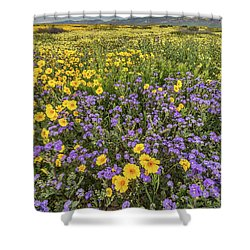 Shower Curtain featuring the photograph Wildflower Super Bloom by Peter Tellone