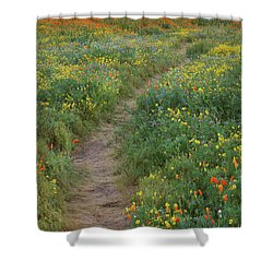 Shower Curtain featuring the photograph Wildflower Trail At Diamond Lake In California by Jetson Nguyen