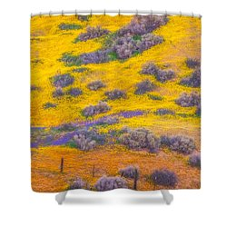 Wildflowers And Fence Shower Curtain by Marc Crumpler