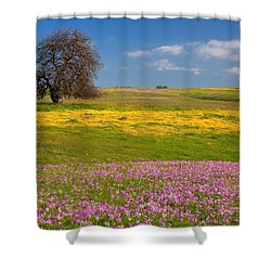 Wildflowers And Oak Tree - Spring In Central California Shower Curtain