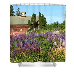 Wildflowers And Red Barn Shower Curtain by Roupen  Baker