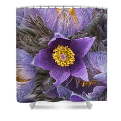 Wildflowers At The Delta Junction Bison Range Shower Curtain