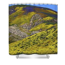 Wildflowers Galore At Carrizo Plain National Monument In California Shower Curtain