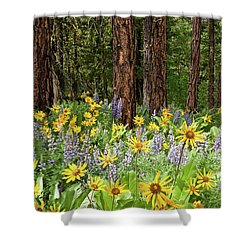 Balsamroot And Lupine In A Ponderosa Pine Forest Shower Curtain