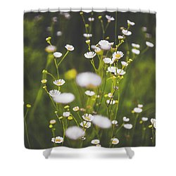 Shower Curtain featuring the photograph Wildflowers In Summer by Shelby Young