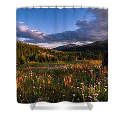 Wildflowers In The Evening Sun Shower Curtain