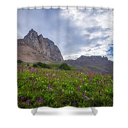 Wildflowers In The Grand Tetons Shower Curtain by Serge Skiba