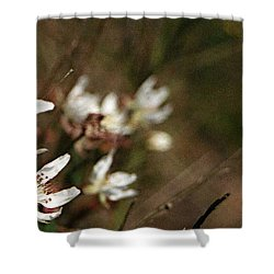 Wildflowers Shower Curtain by Marna Edwards Flavell